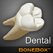 BoneBox\u2122 - Dental Lite