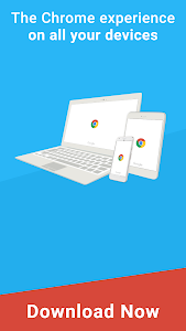 screenshot of Google Chrome: Fast & Secure version Varies with device