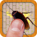 Cockroach Smasher Free Fun Game for Kids