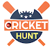 Download Cricket Hunt 4.0 APK