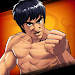 Download Kung Fu Attack - PVP 1.7.2.102 APK