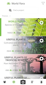 screenshot of PlantNet Plant Identification version 3.0.1